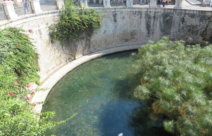 Fuente Aretusa de Ortigia turismo en Siracusa