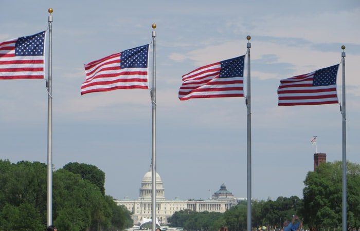 Banderas de EEUU con el Capitolio al fondo Washington