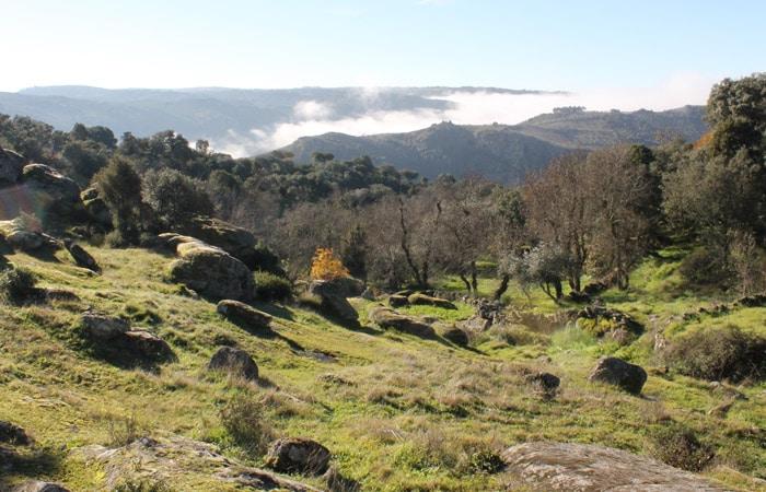 Alrededores de Pinilla de Fermoselle