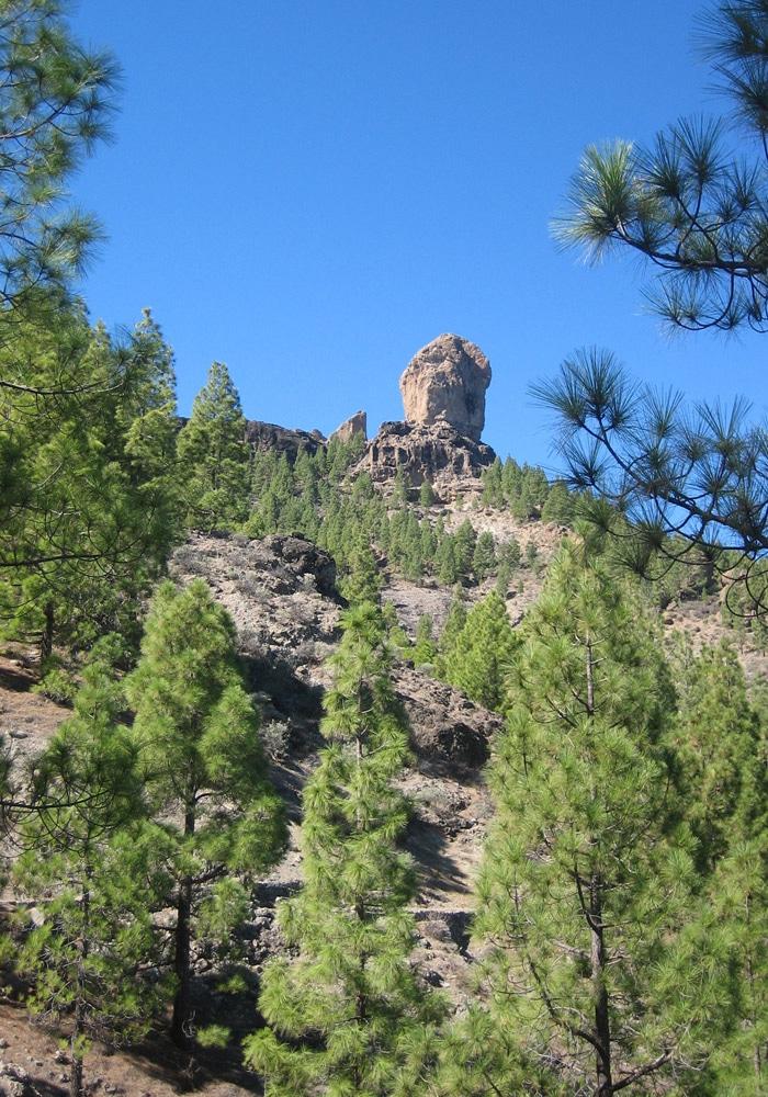 El Roque Nublo, desde el inicio del sendero