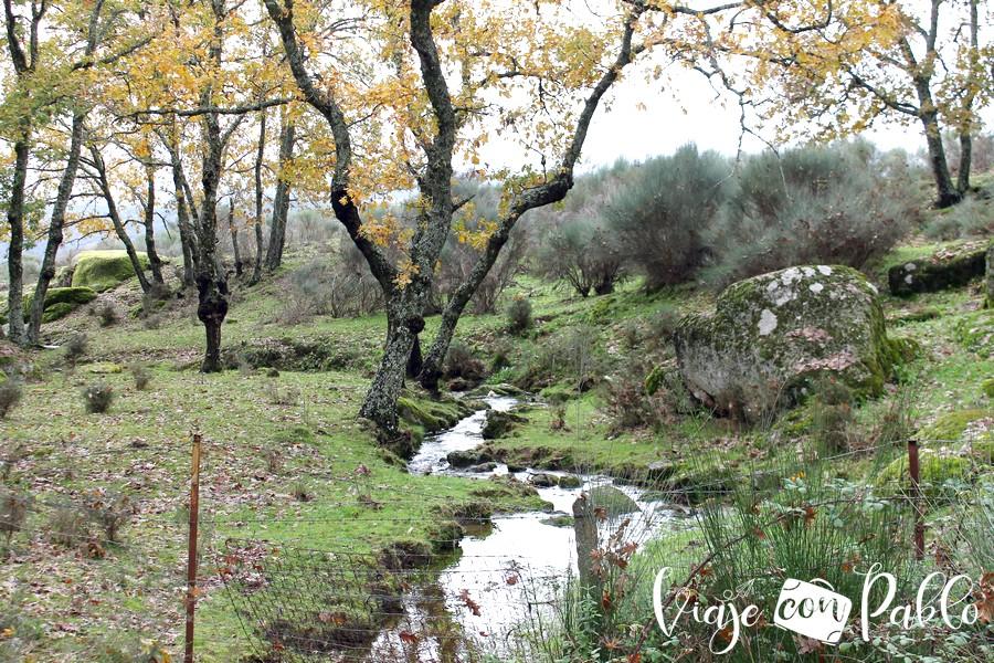 Pequeño arroyo junto al camping El Burro Blanco