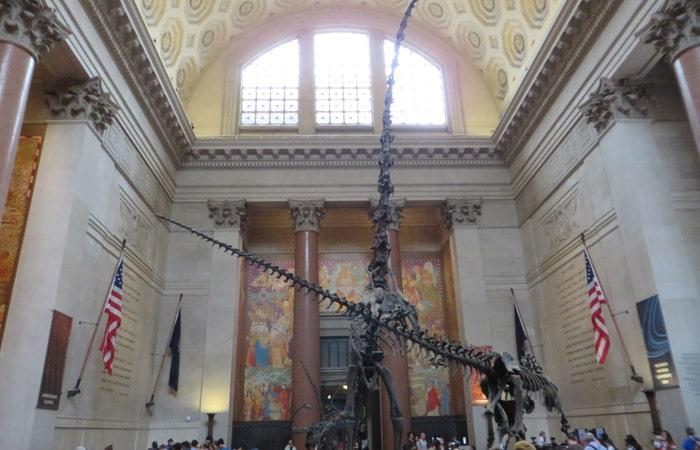Hall del Museo Americano de Historia Natural