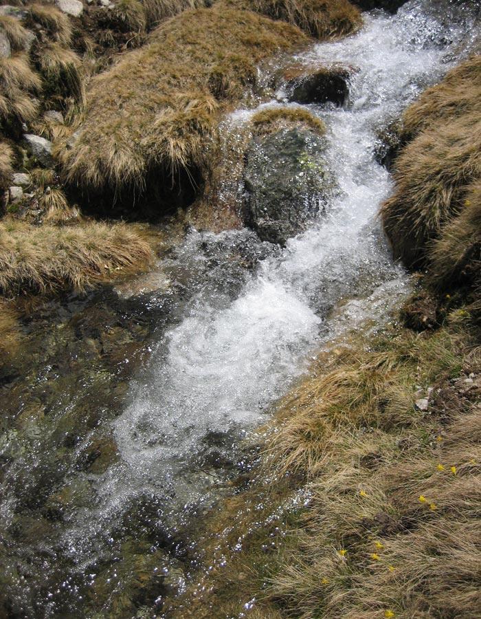 Agua procedente del deshielo Laguna Grande de Gredos