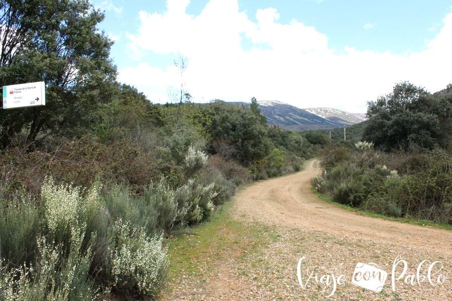 Pista forestal de regreso ruta Monsagro-El Vao