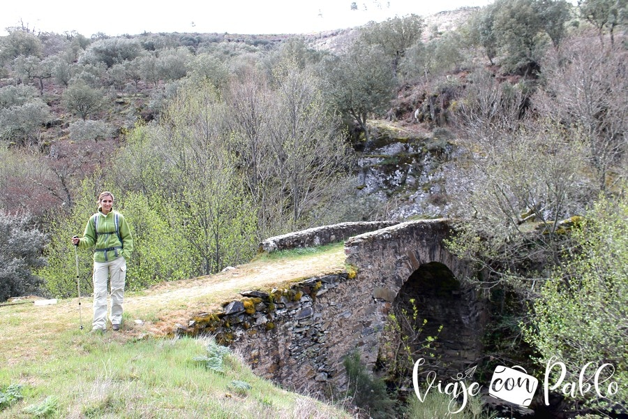 Puente sobre el arroyo del Cerezo ruta Monsagro-El Vao