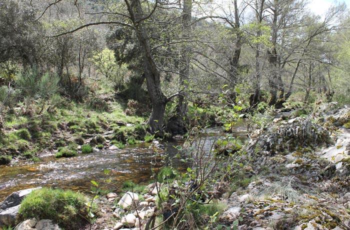 Río Agadón a su paso por El Vao rutas por la Sierra de Francia