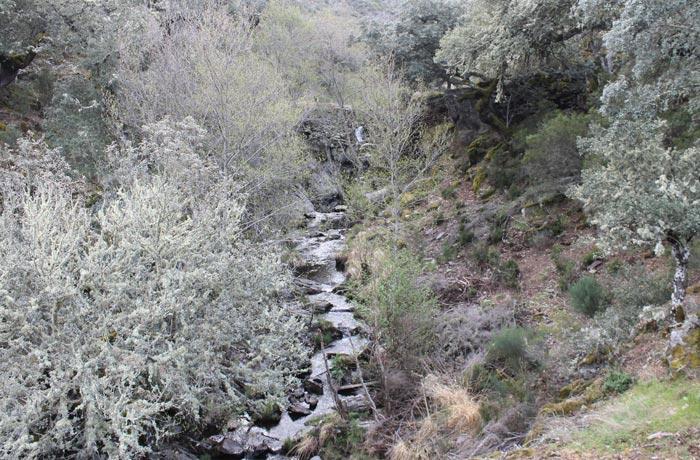 Cauce del río Agadón rutas por la Sierra de Francia