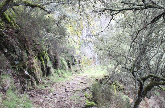 Tramo más bello de la senda Monsagro El Vao rutas por la Sierra de Francia