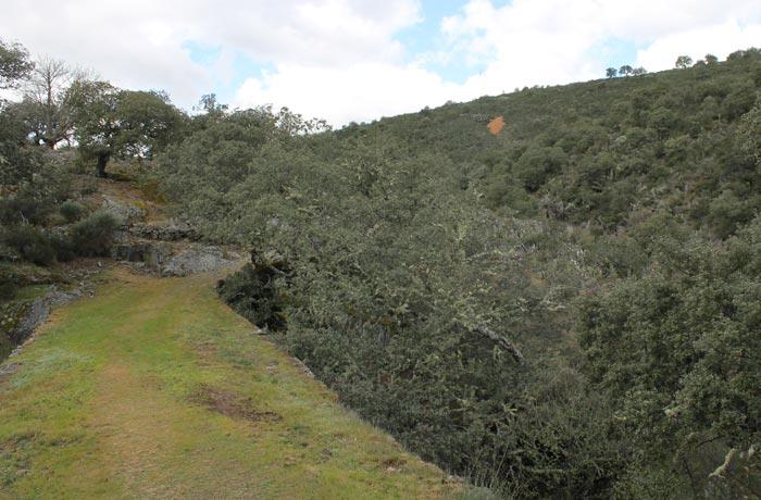 Un tramo del sendero Monsagro El Vao rutas por la Sierra de Francia
