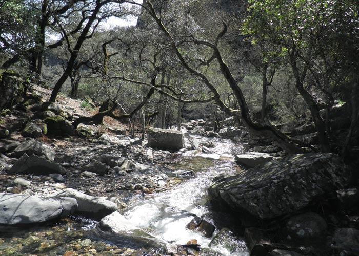Lugar en el que se atraviesa por unas piedras el Arroyo Batuecas Cascada del Chorro