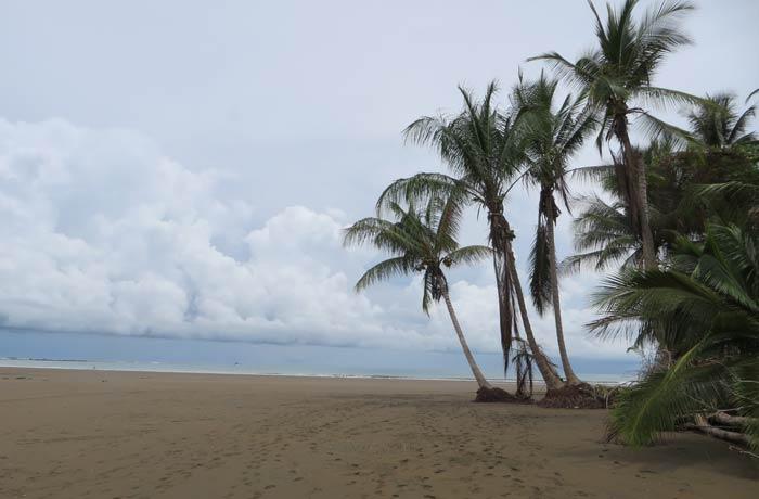Playa del Parque Nacional de Marino Ballena viajar a Costa Rica por libre
