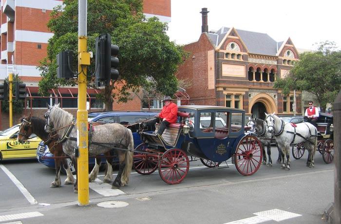 Dos coches de caballos en una calle de la ciudad qué ver en Melbourne