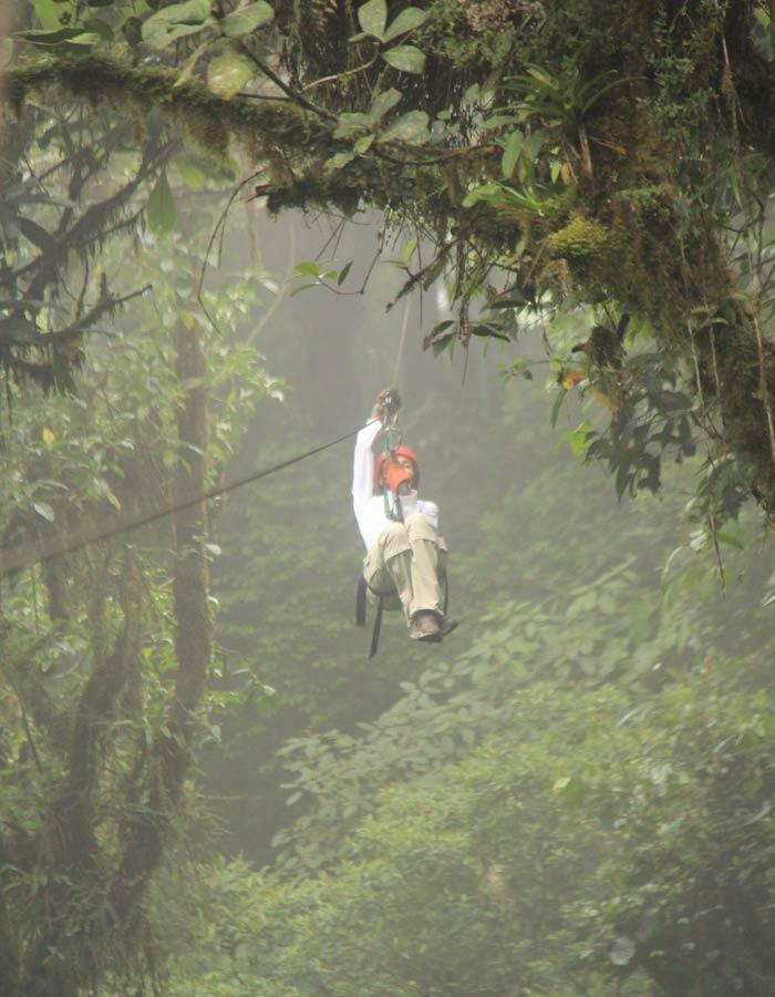 canopy que hacer en Monteverde