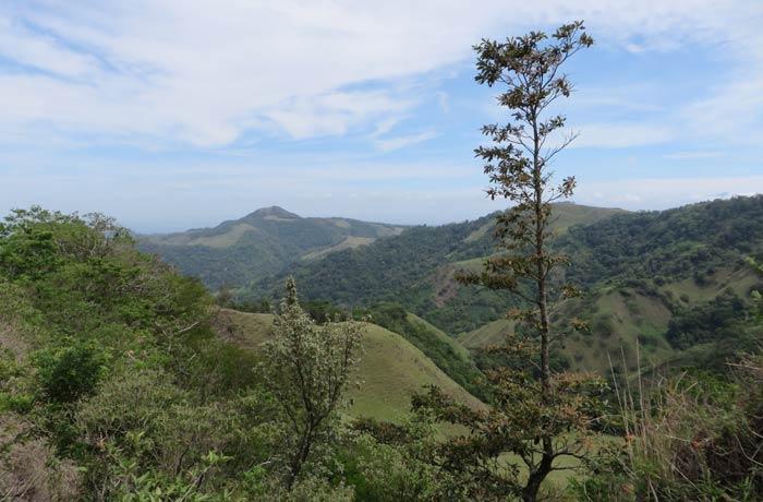 Paisaje de camino a Monteverde
