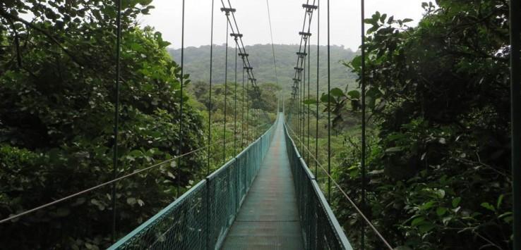 puentes colgantes qué hacer en Monteverde