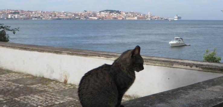 Lisboa desde Cacilhas