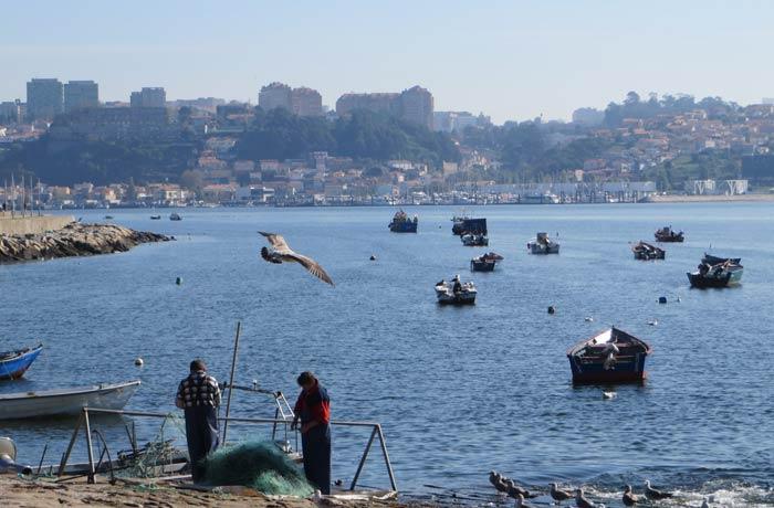 Pescadores con Vila Nova de Gaia al fondo desembocadura del Duero