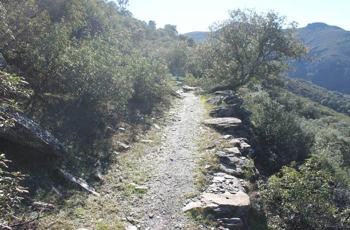 Sendero del primer tramo del Camino de los Trasiegos