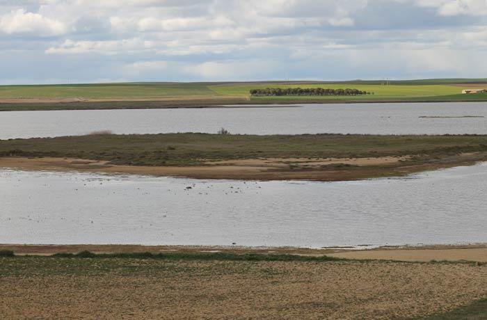 Vista de la Laguna Grande de Villafáfila
