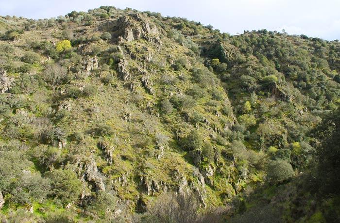 Entorno de la Faia da Água Alta cascadas en Portugal