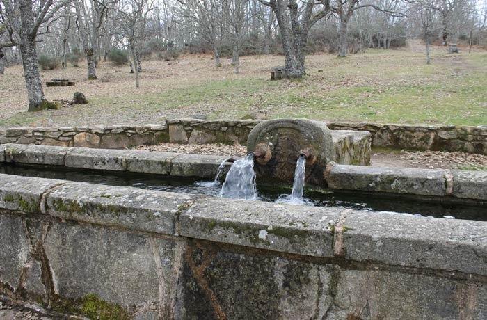 Fuente Castaño Camino de las Raíces