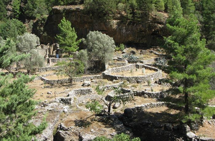 Restos del antiguo poblado de Samaria