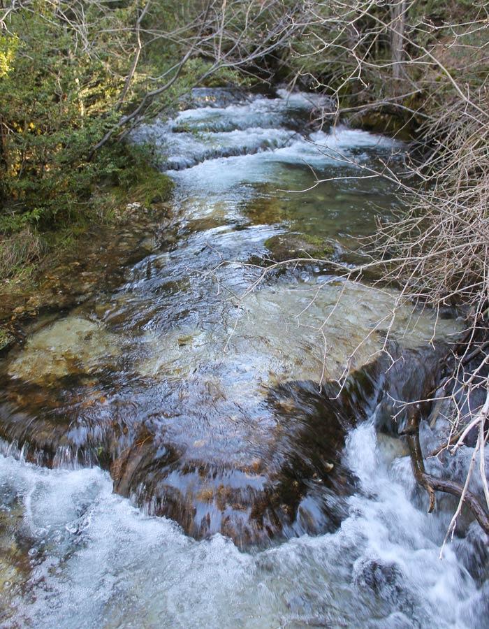 Caudal del río Cuervo