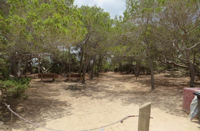 Reserva de Can Marroig que ver en Formentera