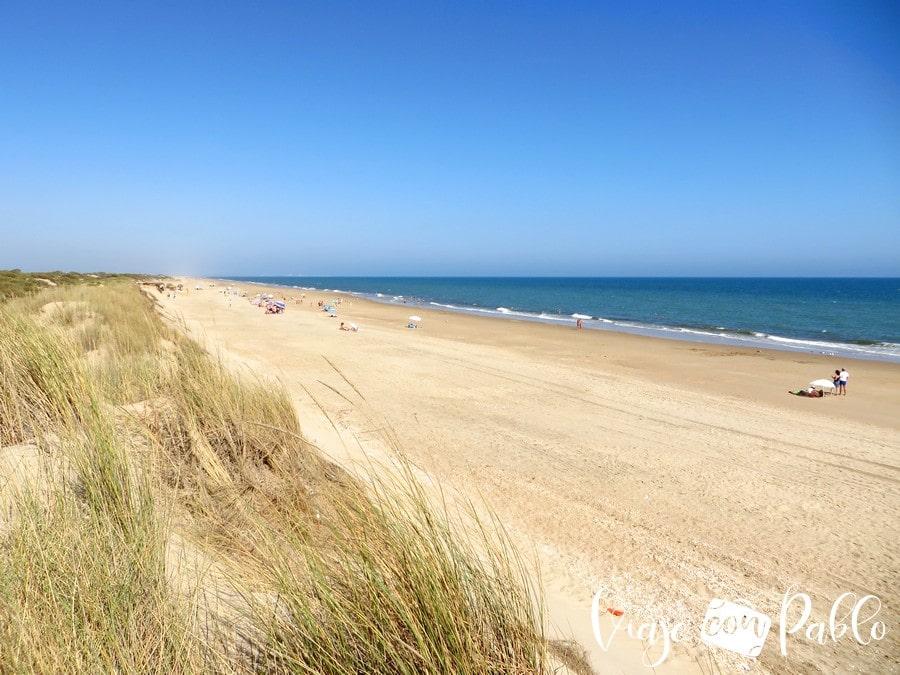 Playa de La Flecha de El Rompido playas de Huelva