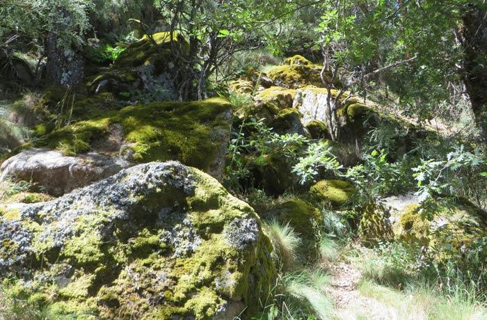Paisaje de la ruta de la Cascada de Sotillo