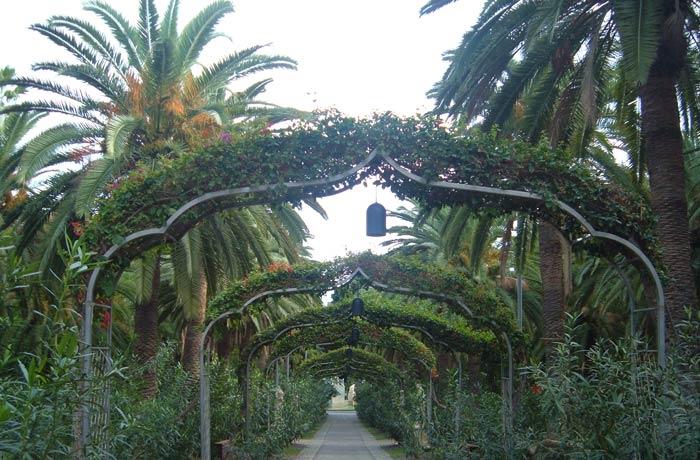 Parque García Sanabria qué ver en Tenerife