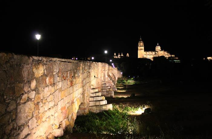 Puente Romano y Catedral vistas de Salamanca