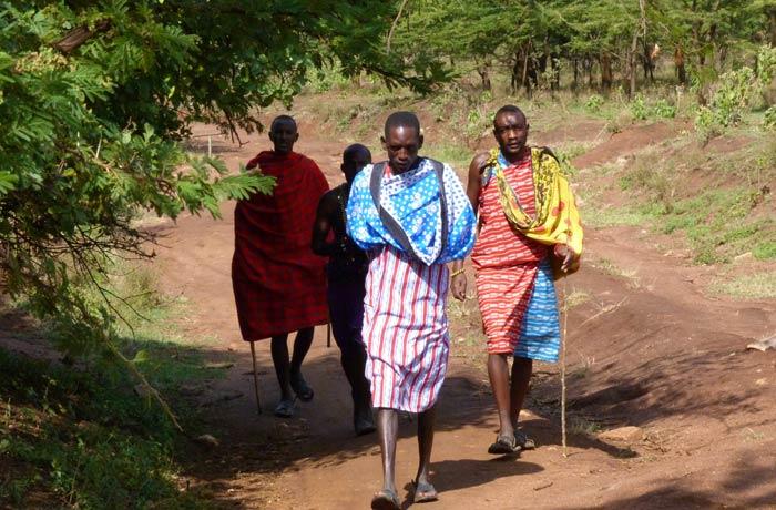 Los Masái aparecen de entre los árboles para recoger a los turistas