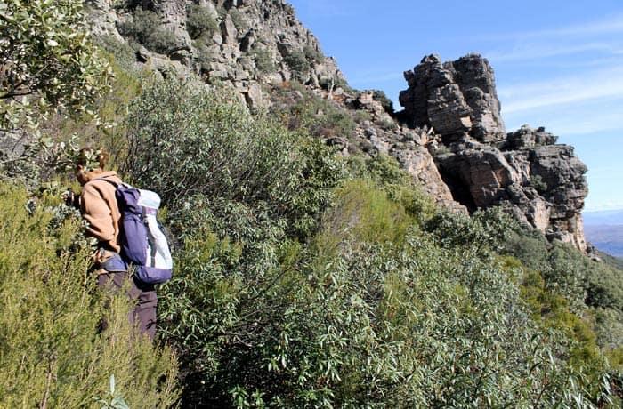 Estefanía abriéndose paso entre la maleza en el sendero que lleva hasta la 'Torrita' Portilla Bejarana