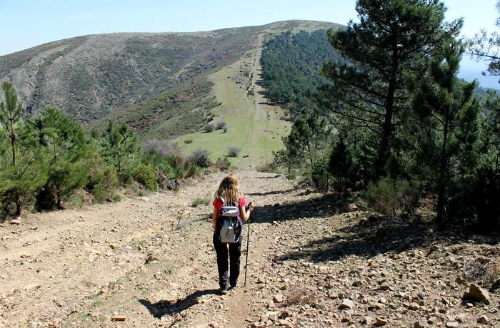 Bajada por la pista con el pico del Castillo al fondo