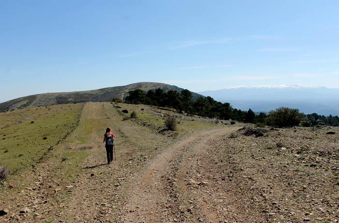 Tercer y último desvío a la izquierda para encarar la subida al pico del Castillo Viejo de Valero