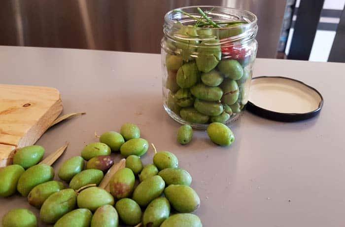 Taller de 'olives trencades' de la mano de Més Cultura en la cooperativa Sant Bartomeu de Sóller