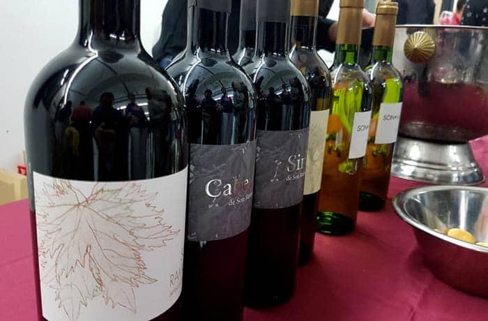 Algunos de los vinos que probamos en la Nit del Vi en Inca qué hacer en Mallorca en invierno