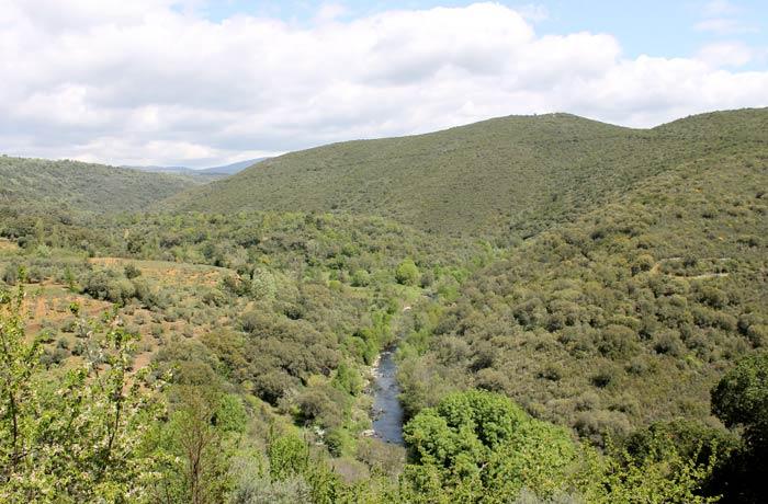 El río Francia, en una vista más panorámica ruta de los Tres Ríos