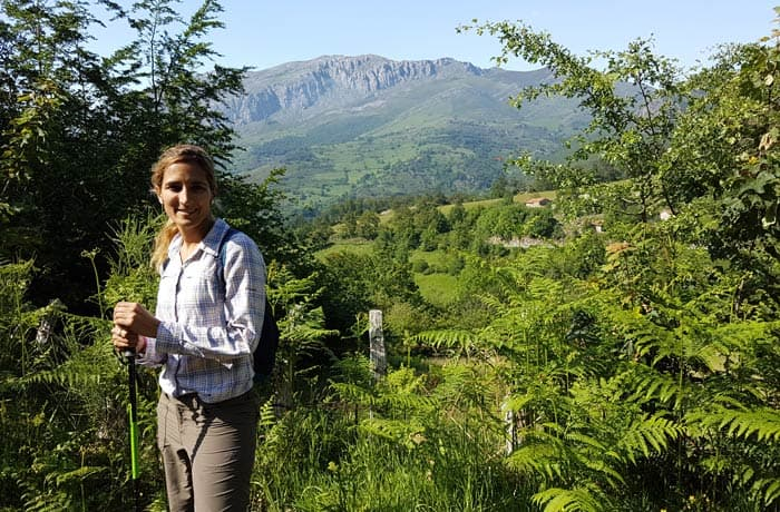 Helechos al principio de la ruta de la cascada del Xiblu