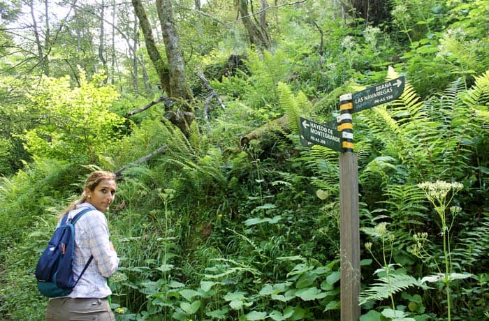 Indicaciones para subir a la cascada del Xiblu tras cruzar el puente sobre el arroyo de la Verde