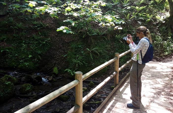Puente sobre el arroyo de la Verde cascada del Xiblu