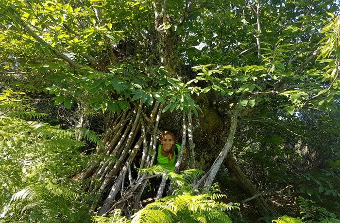 Estefanía en la choza levantada con palos en el tronco de este castaño chorrera de Jigareo