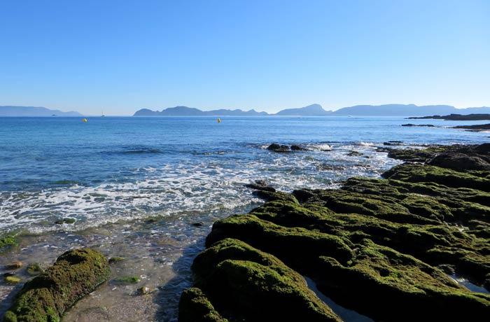 Rocas cubiertas de algas en la playa de Melide