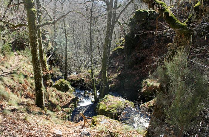 Vistas del bosque ruta de las Fuentes Medicinales