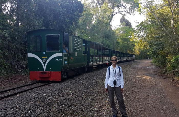 Tren de las Cataratas del Iguazú