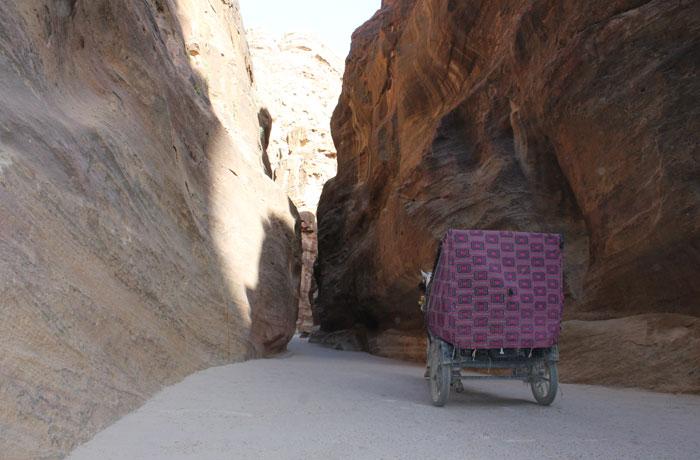 Un carruaje por el desfiladero que ver en Petra