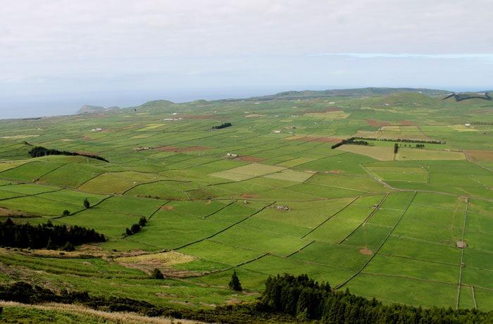 Vista de os campos de pastos de Terceira desde la serra do Cume