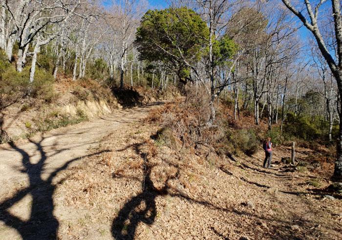 Desvío a la derecha para tomar el sendero que une La Alberca con Herguijuela