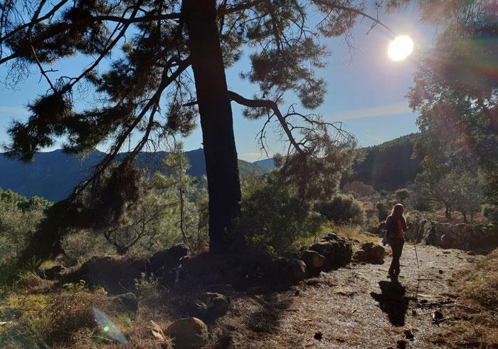Tramo final antes de llegar a Herguijuela de la Sierra